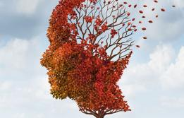 Malaltia d'Alzheimer a Vall d'Hebron