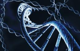 Predisposició genètica al càncer