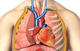 Drenatge venós anòmal pulmonar total a Vall d'Hebron