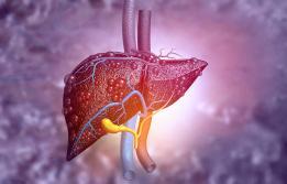 Hepatitis Vall d´Hebron
