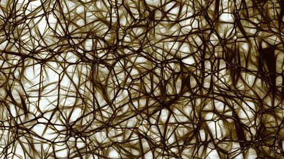 Cefalea i Dolor Neurològic a Vall d'Hebron Institut de Recerca