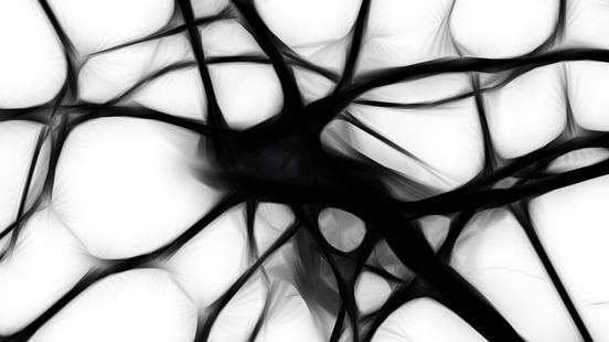 Patologia neuromuscular i mitocondrial a Vall d'Hebron Institut de Recerca