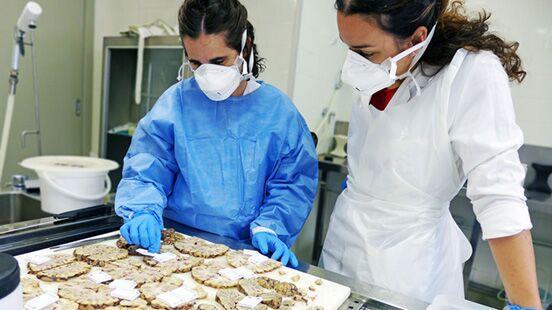 Anatomia patològica a Vall d'Hebron