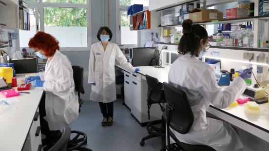 Microbiota i malaltia inflamatòria intestinal