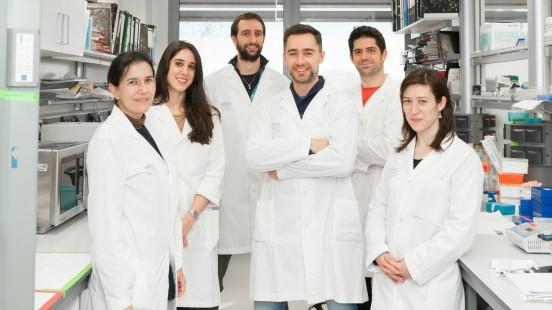 Grup de cèl·lules mare i càncer a Vall d'Hebron