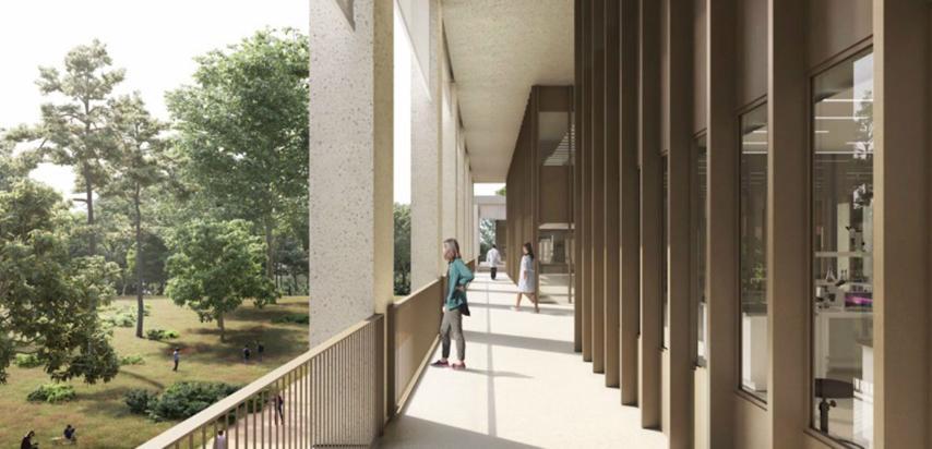 Els projectes de futur del Vall d'Hebron.